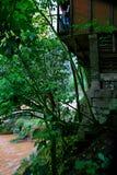 丹霞地形在赤水 免版税库存照片