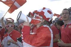 丹麦扇动橄榄球 免版税库存图片