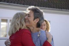 丹麦最初MINISTER_WOMEN天庆祝 库存照片