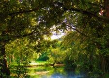丹麦森林好的沉寂 免版税库存照片