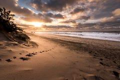 丹麦海滩海岸线 免版税库存图片