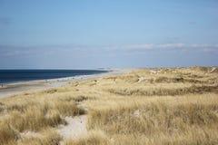 丹麦海滩 免版税库存图片