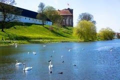 丹麦湖 免版税库存图片