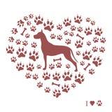 丹麦种大狗剪影的好的图片在狗tra背景的  免版税库存图片