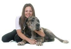 丹麦种大狗和少年 库存照片