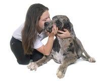 丹麦种大狗和少年 免版税库存照片