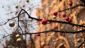 为与红色和金球的圣诞节充分地装饰的街道 圣诞树在城市 议院照亮与很多 免版税库存照片