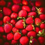 为卖射击的新鲜的草莓 库存照片