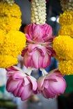 为印度寺庙祈祷装饰的桃红色莲花手 免版税图库摄影