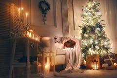 为圣诞节装饰的室 库存图片