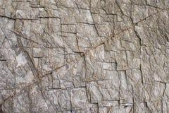 为完成的物质室内设计墙壁ภ¡地板使有大理石花纹 库存图片