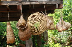为抓住鱼的竹工艺工具 库存图片