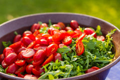 为沙拉和蕃茄准备的火箭队 免版税库存照片