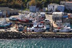 为渔船靠码头在圣约翰的纽芬兰港口。 图库摄影