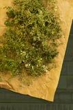 为烘干准备的麝香草草本品种 免版税库存照片