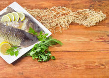 为烹调准备的两个不同鲤鱼在盘 免版税库存图片