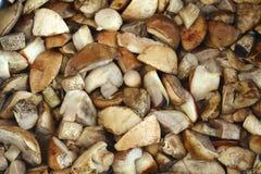 为烹调蘑菇做准备。 库存照片