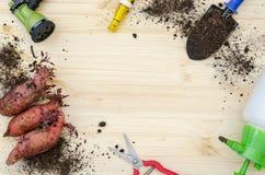 为白薯种田的工具 免版税图库摄影
