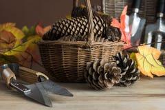 为秋天的园艺工具 免版税库存图片