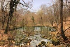 为繁殖的鳟鱼王子创造的池塘F f 尤苏波夫,这些地方前所有者  免版税库存照片