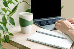 为膝上型计算机工作妇女的手 一栋公寓的一个工作场所在绿色植物中 库存照片