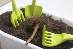 为花艺的微型工具 小铁锹、叉子和犁耙耕种的地球在花盆 图库摄影