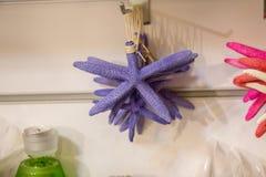 为装饰目的找到的美丽的海星 免版税库存照片