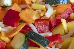 为进一步处理切开和混合的未加工的新鲜蔬菜 图库摄影