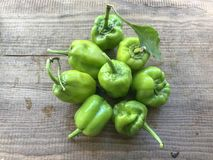 为食物收集的新鲜的胡椒 免版税库存照片