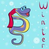 为什么天气很冷的在冬天蟒蛇? 免版税库存图片