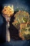 为养蜂业的古色古香的工具 免版税库存照片