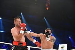 为WBO洲际的次重量级冠军传送带的战斗 免版税图库摄影