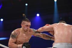 为WBO洲际的次重量级冠军的把装箱的战斗 图库摄影