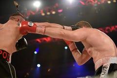 为WBO洲际的次重量级冠军的把装箱的战斗 免版税库存照片
