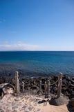 主导的海洋步骤 免版税库存图片