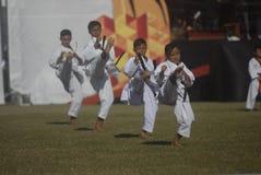 主持亚运会的印度尼西亚2018年 库存图片