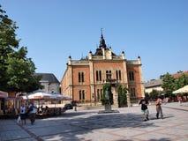主教novi宫殿s哀伤的塞尔维亚 库存照片