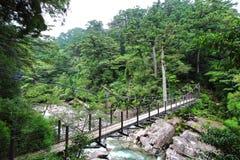主要看法穿过河的几座桥梁之一在Yakusugiland公园 免版税图库摄影