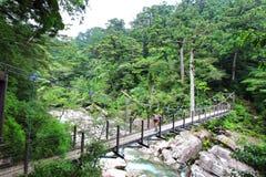 主要看法穿过河的几座桥梁之一在Yakusugiland公园 免版税库存图片
