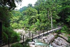 主要看法穿过河的几座桥梁之一在Yakusugiland公园 库存照片