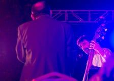 丽特Henn演奏低音作为瓦特看的雅尼 图库摄影
