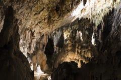 举世闻名的洞波斯托伊纳在有钟乳石的斯洛文尼亚 免版税库存照片