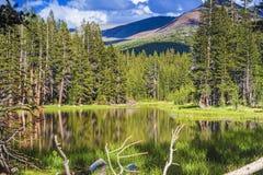 举世闻名的优胜美地国家公园的平安的风景C的 图库摄影