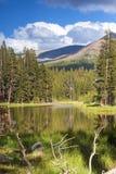 举世闻名的优胜美地国家公园的平安的风景C的 免版税库存照片