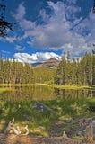 举世闻名的优胜美地国家公园的风景在加利福尼亚 图库摄影