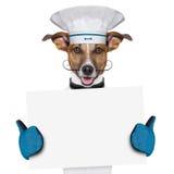狗厨师厨师横幅 库存图片