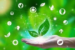 举行与在网络连接的叶子和环境象的手在自然背景,技术生态概念 免版税库存照片