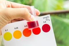 举行亚硝酸盐测试的手 免版税图库摄影