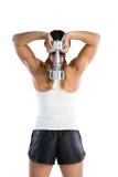 举行哑铃的女运动员背面图 免版税库存照片