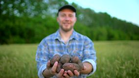 举行在土豆手生物产品的农夫画象  概念-农夫的市场,有机耕田,农场 股票视频